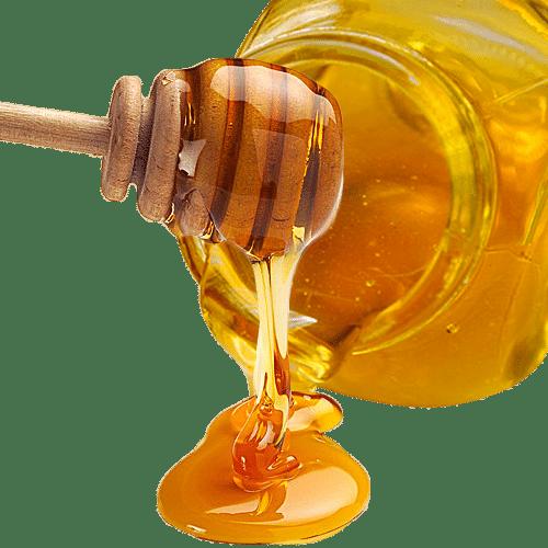 عسل گون- ۵۰۰ گرمی