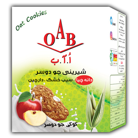 کوکی جو دوسر با سیب خشک و دارچین OAB  وزن ۱۹۰ گرم