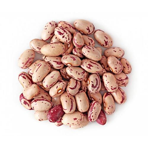 لوبیا چیتی – ۵۰۰ گرمی