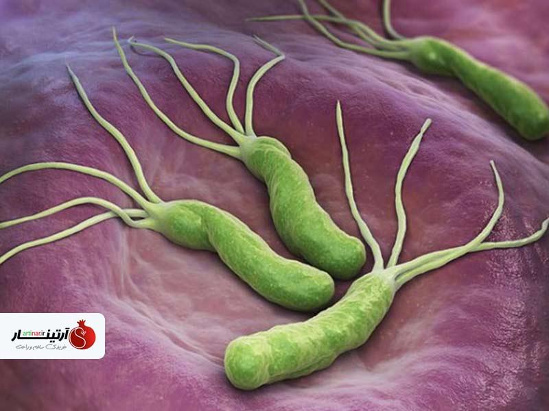 راه های درمان میکروب معده